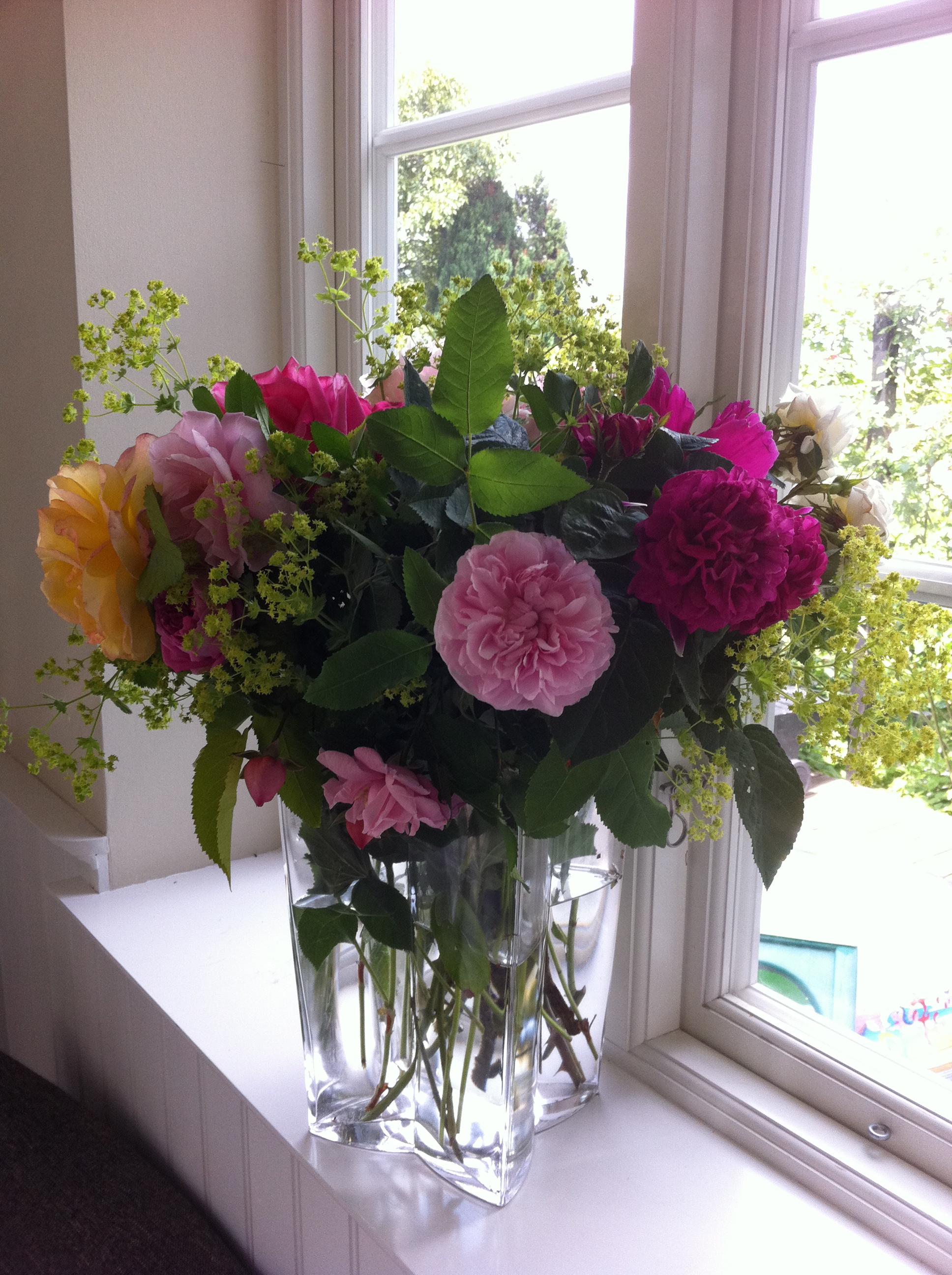 Undgå kalk i vaser