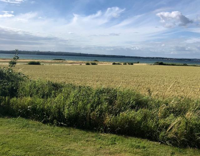 Jeg elsker den danske sommer