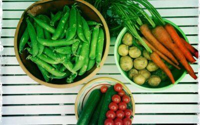 Undgå spild af frugt & grønt